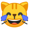 cat with tears of joy emoji on google android