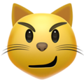 cat with wry smile emoji on apple iphone iOS