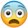 fearful face emoji on whatsapp