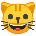 grinning cat emoji on google android