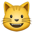 grinning cat emoji on samsung