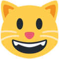 grinning cat emoji on twitter (twemoji)