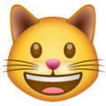 grinning cat emoji on whatsapp