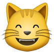 grinning cat with smiling eyes emoji on samsung