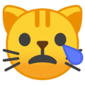 crying cat emoji on google android