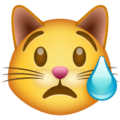 crying cat emoji on whatsapp